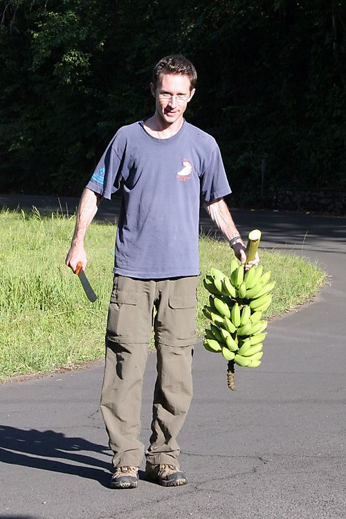 Jim_bananas