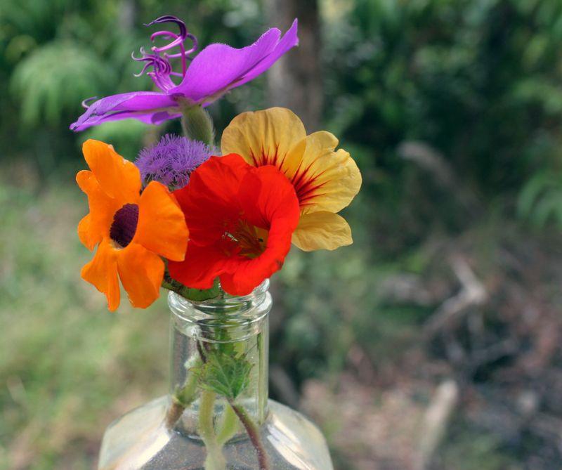 Dump_flowers2